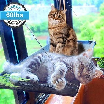 Camlinbo'sCat Window Bed for Large Cats