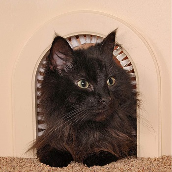 Cathole Interior Pet Door with Grooming Brush