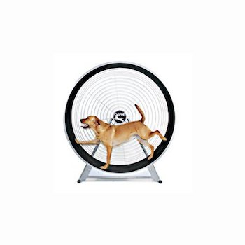 GoPet Treadwheel - Indoor Or Outdoor Exercise