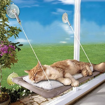 PETPAWJOY Cat Window Bed and Hammock With Suction Cups