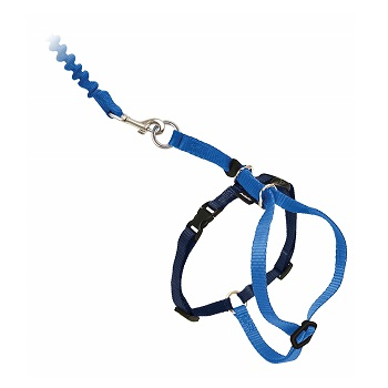 PetSafe Come with Me Kitty Harness with Bungee Leash