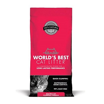 World's Best Cat Litter For Multi Cats