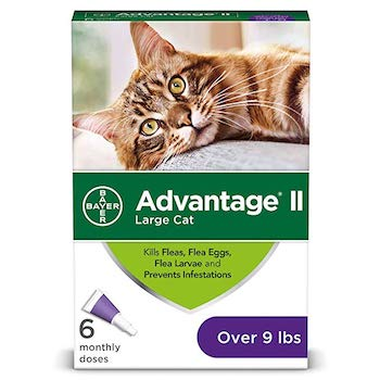 Bayer Advantage II Flea Prevention for Large Cats
