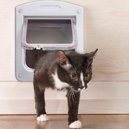 Cat door flap