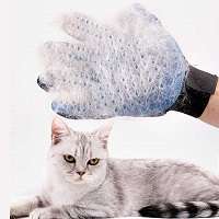 Hair removal mitt