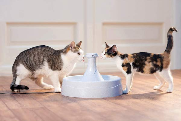 List of Cat Water Fountains
