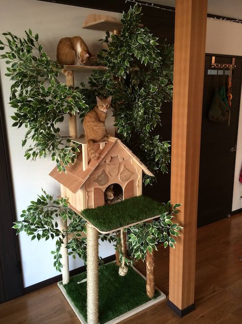 natural cat tree DIY plan