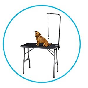 Portable Grooming Table for Cat