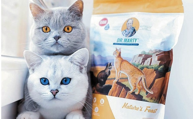 Dr. Marty Cat Food Reviews