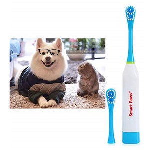 Electronic Toothbrush with 2 Soft Hair Brush for Pet