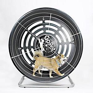 GoPet Treadwheel ToySmall Cat Exercise Wheel