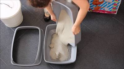 change the entire litter once a week to clean a litter box