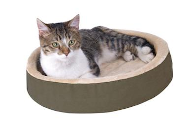 Are Heated Beds Safe for Cats