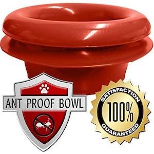Best Ant Proof Cat Bowls