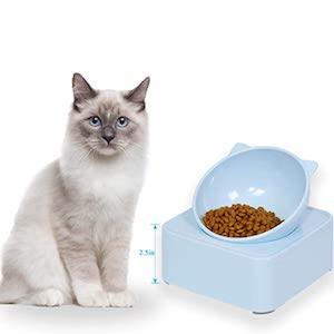 Best Tilted Cat Bowl