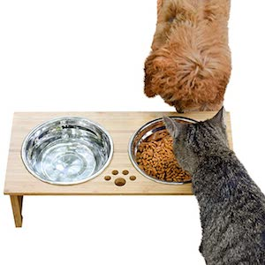 FOREYY Raised Pet Bowls for Cats