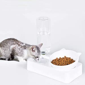 Marchul 0-15°Adjustable Tilted Water and Food Bowl Set