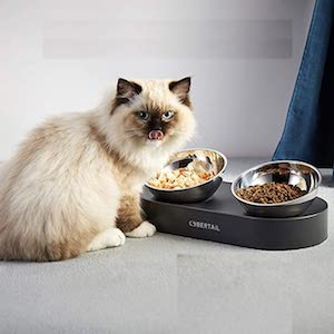 PETKIT CYBERTAIL 15° Tilted Raised Cat Food and Water Bowls