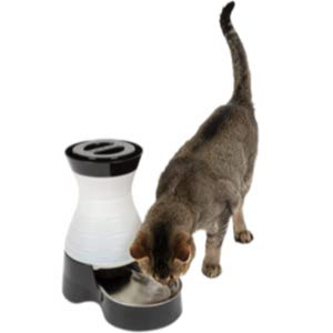 PetSafe Automatic Water Dispenser
